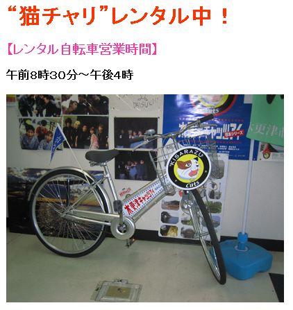 cycle365-100125.jpg