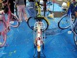 20081108-091.JPG
